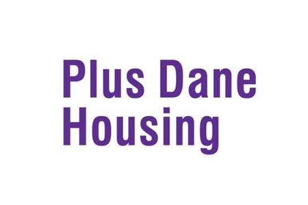 Plus Dane logo